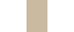Logo AC2 gold