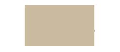 Logo Steuerberaterkammer gold